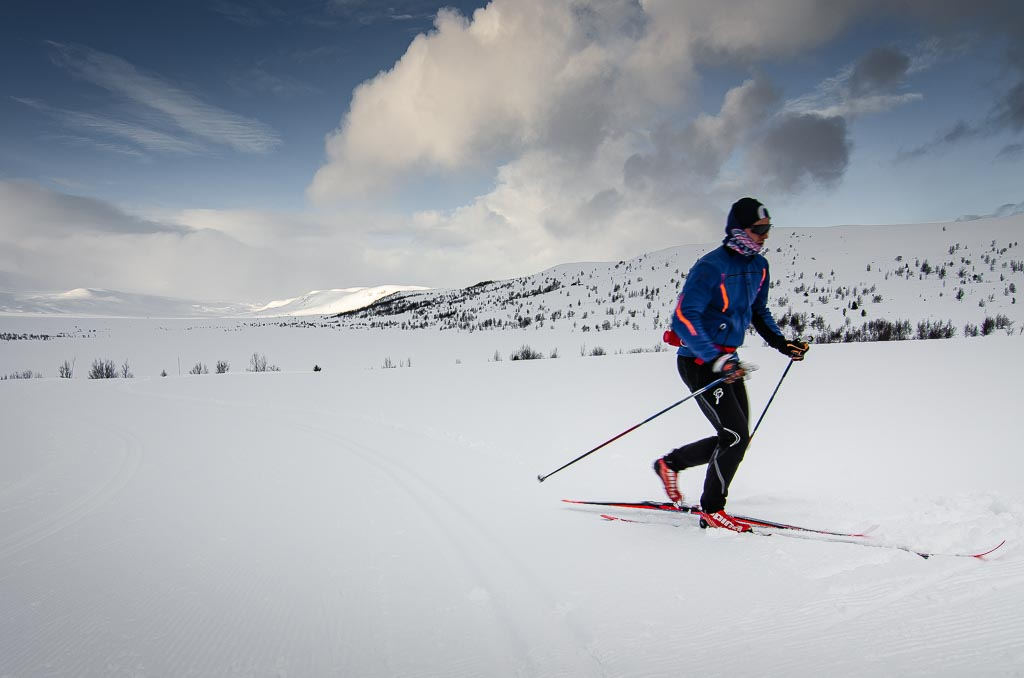 Budalen på Hardangervidda
