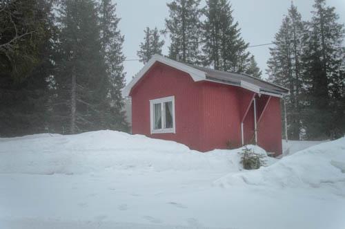 Den røde hytten i skogen